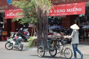 sugar cane seller in the streets of Saigon in Vietnam