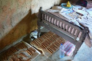 cinnamon bark drying under the bed in house made of ground in Sri Lanka
