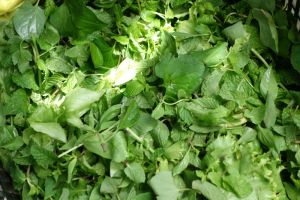 fresh mint mixed with other leaves on the market in Mui Ne, Vietnam by Authentic World Food