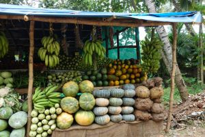 greengrocer`s stall in India