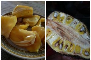 Jack fruit - the whole fruit and the pulps