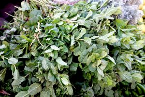 Fresh mint on a traditional Moroccan market souk