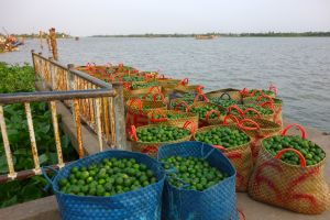 Lime wholesale on a floating market on Mekong river in Vietnam - by Authentic World Food